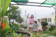 Sân thượng bê tông 40m² 'biến hình' thành khu vườn xanh mát chỉ với 23 triệu đồng ở Đà Nẵng