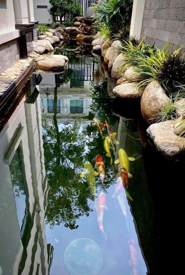 Vân Hugo đón con trai vào Sài Gòn ở biệt thự, trồng nhiều loại hoa quanh nhà vì hôn phu-12