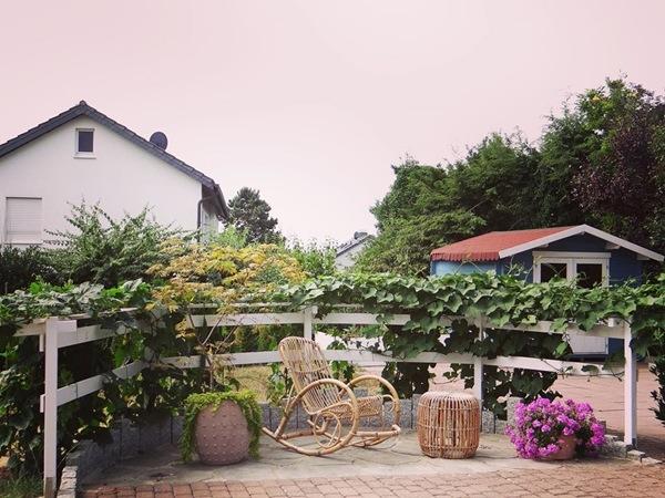 Mẹ Việt biến vườn cỏ dại thành thiên đường bên Tây, hàng xóm phấn khích sang tận nhà khen-8