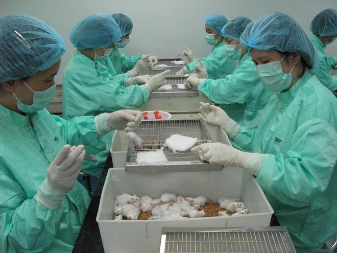 Tiến độ vaccine Covid-19 ở Việt Nam-1