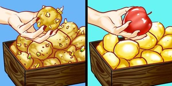 Mẹo cực hay khi nấu ăn: Tách lòng đỏ trứng, mài dao, khử mùi tủ lạnh dễ như ăn kẹo-5