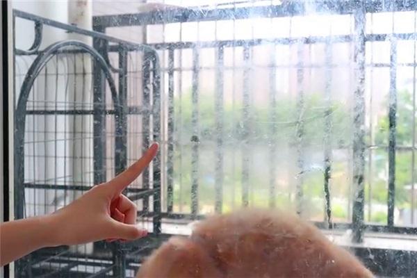 Lau kính không cần nước chuyên dụng, chỉ với một mẹo đơn giản này kính sạch bong kin kít mà không để lại vết-1