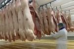 """Hà Nội: Giá thịt lợn giảm, rau xanh tăng chóng mặt"""" vì mưa-6"""
