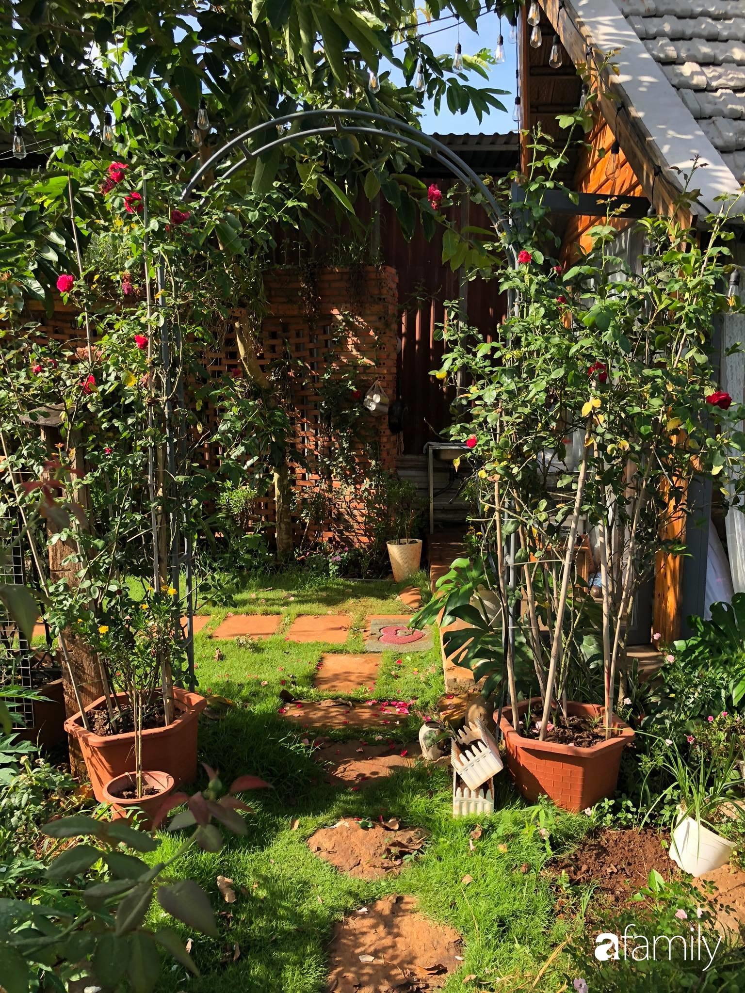 Khu vườn hoa hồng đẹp như cổ tích mà người chồng ngày đêm chăm sóc để tặng vợ con ở Vũng Tàu-32