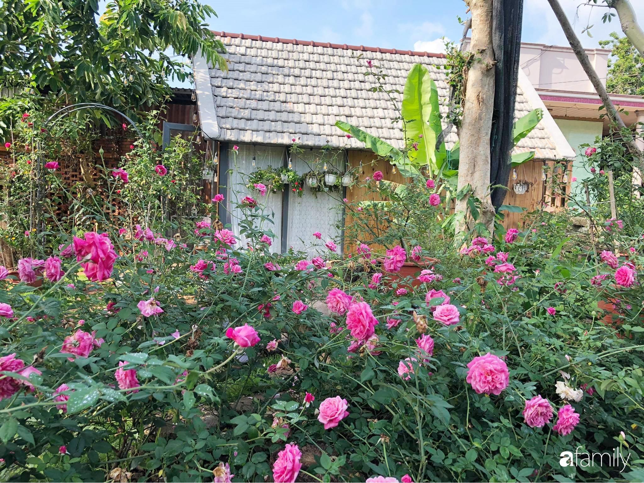 Khu vườn hoa hồng đẹp như cổ tích mà người chồng ngày đêm chăm sóc để tặng vợ con ở Vũng Tàu-10
