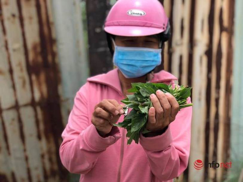 Xót lòng nhìn bữa cơm canh rau dại của người lao động nghèo mắc kẹt ở Đà Nẵng-3