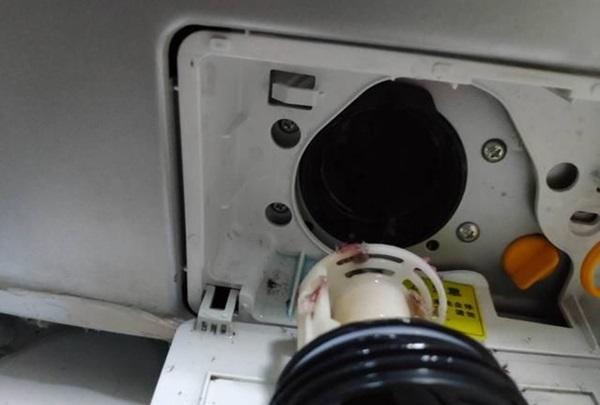 Tháng nào cũng vệ sinh lồng giặt nhưng lại bỏ qua bộ phận này, bảo sao máy giặt nhà bạn bẩn hơn cả cống thoát sàn-5