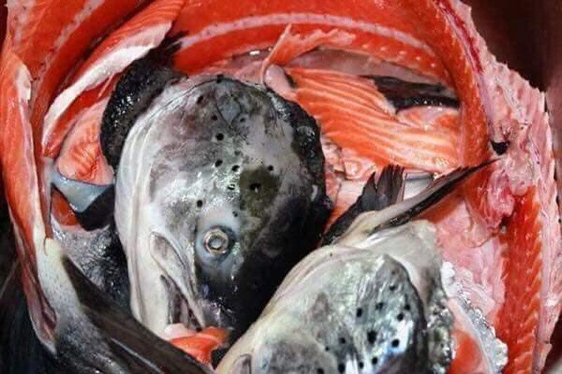 Chỉ 10 nghìn/kg, chế đủ món với hải sản 'nhà giàu'-3