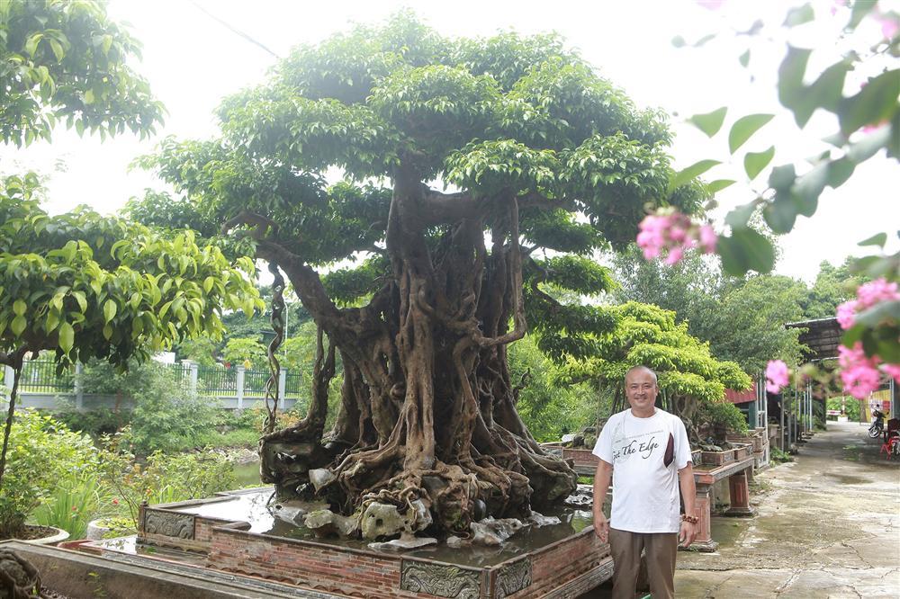 Báu vật ẩn mình có tuổi đời 500 năm ở Hà Nội, trả 100 cây vàng không bán-10
