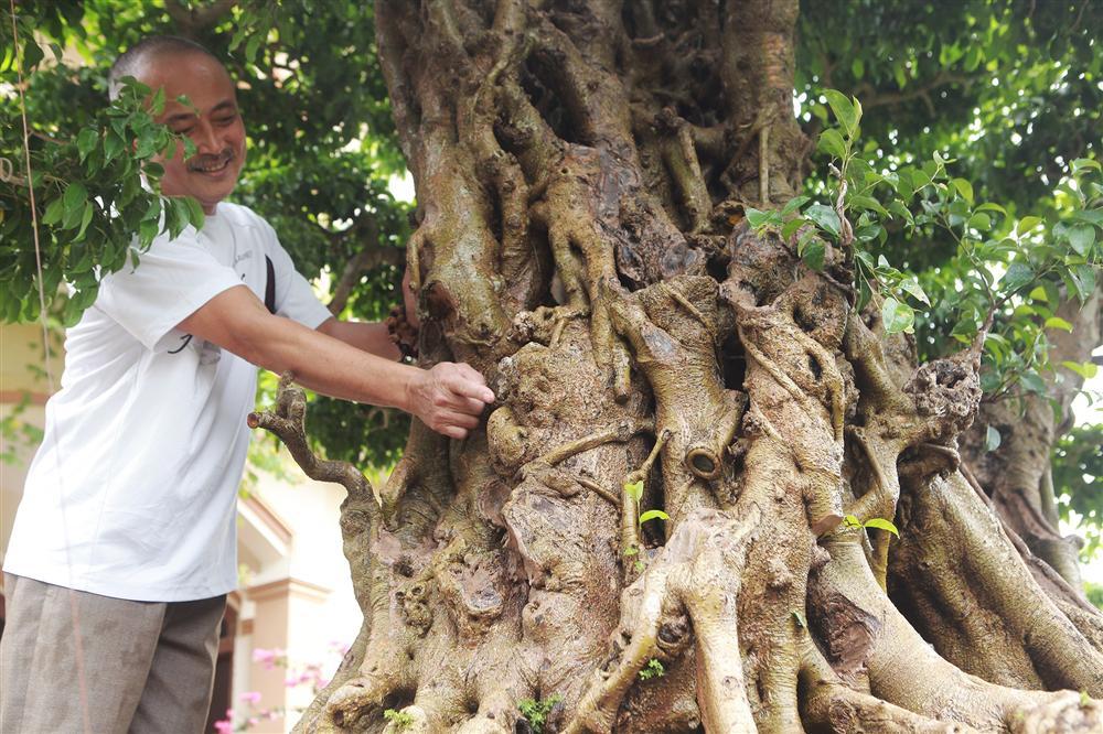 Báu vật ẩn mình có tuổi đời 500 năm ở Hà Nội, trả 100 cây vàng không bán-8