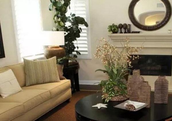 7 loại cây cảnh phong thủy trong phòng khách giúp gia chủ chiêu tài, kích lộc, gặp nhiều may mắn-2