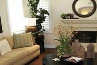 7 loại cây cảnh phong thủy trong phòng khách giúp gia chủ chiêu tài, kích lộc, gặp nhiều may mắn