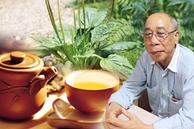 Có một loại cỏ mọc dại ở Việt Nam nhưng trị bệnh cực tốt: Vừa giúp cai nghiện thuốc lá lại là 'thần dược' trị triệt để 7 bệnh vặt cho trẻ em, phụ nữ