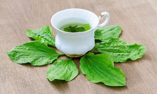 Có một loại cỏ mọc dại ở Việt Nam nhưng trị bệnh cực tốt: Vừa giúp cai nghiện thuốc lá lại là thần dược trị triệt để 7 bệnh vặt cho trẻ em, phụ nữ-5