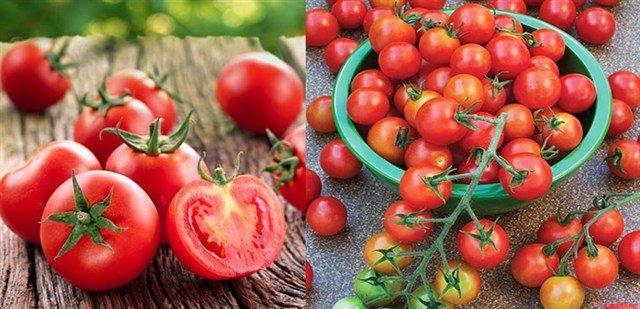 Bí quyết chọn cà chua ngon chín tự nhiên, bà nội trợ nào cũng cần biết-2