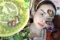 Nghe chất nhầy của ốc sên có khả năng làm đẹp da, cô gái lập tức ra vườn bắt cả bầy thả lên mặt làm thử nghiệm khiến dân mạng tranh cãi