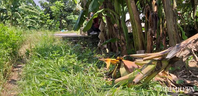 NÓNG: Đã có kết quả xét nghiệm ADN, bắt khẩn cấp đối tượng hiếp dâm bé gái 12 tuổi trong vườn chuối ở Hà Nội-1