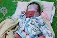 Bé gái sơ sinh bị bỏ rơi ở vườn bắp