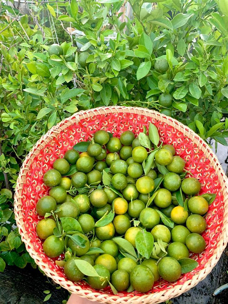 Ghen tị khu vườn 200m² ngập tràn hoa tươi và rau củ quả sạch trên sân thượng của nữ doanh nhân Sài Gòn-12