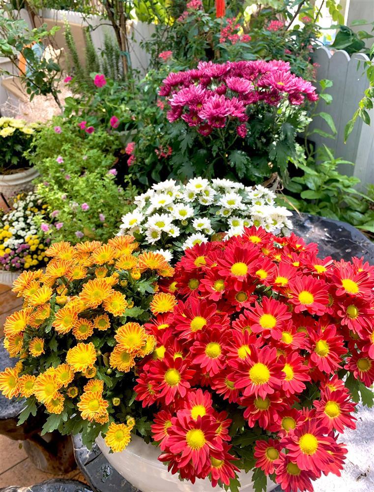 Ghen tị khu vườn 200m² ngập tràn hoa tươi và rau củ quả sạch trên sân thượng của nữ doanh nhân Sài Gòn-22