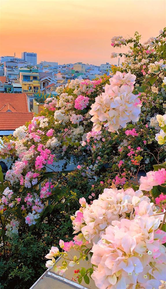 Ghen tị khu vườn 200m² ngập tràn hoa tươi và rau củ quả sạch trên sân thượng của nữ doanh nhân Sài Gòn-23