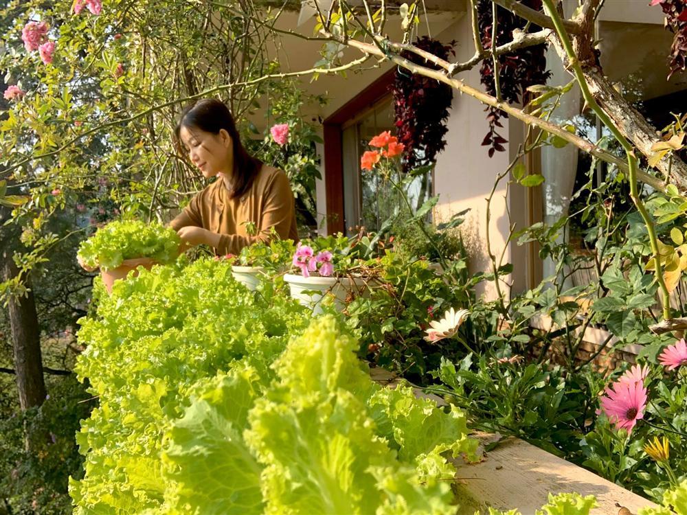 Ghen tị khu vườn 200m² ngập tràn hoa tươi và rau củ quả sạch trên sân thượng của nữ doanh nhân Sài Gòn-24