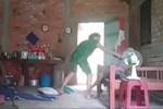 Vụ con gái đánh đập, đổ rác vào mặt mẹ già 88 tuổi ở Long An: Hàng xóm bật khóc khi xem clip, người cháu rể từ chối trả lời-9