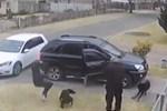 Người đàn ông bám nắp capô ôtô của vợ cũ 20 km-1