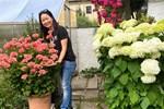 Tận dụng sân thượng chung cư, nữ giám đốc ở Hà Nội đã trồng được một vườn rau đủ loại rau quả sạch với 8 triệu tiền đầu tư-31