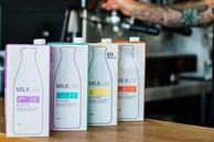 Thu hồi sữa hạnh nhân Milk Lab 1L nghi nhiễm khuẩn độc hại