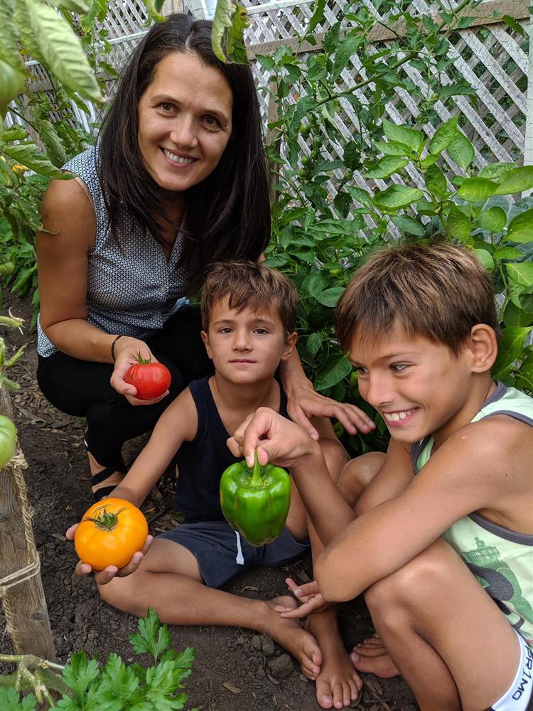Sau 5 năm nỗ lực trồng rau quả sạch cho hai con trai thưởng thức, mẹ đảm đã thu lại những thành quả bất ngờ-1