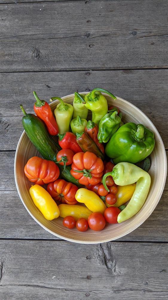 Sau 5 năm nỗ lực trồng rau quả sạch cho hai con trai thưởng thức, mẹ đảm đã thu lại những thành quả bất ngờ-8
