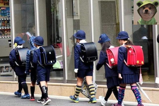 Vì sao cặp học sinh tiểu học Nhật Bản có giá hơn 30 triệu VNĐ? Bí ẩn bên trong đáng kinh ngạc, thời điểm mấu chốt có thể biến thành vật cứu thân-5