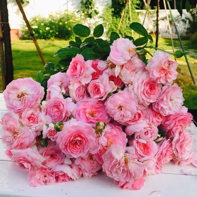 Biệt thự nhà vườn ngập tràn các loại hoa của gia đình ở Bình Dương-10