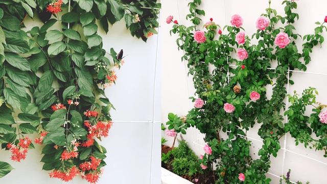 Biệt thự nhà vườn ngập tràn các loại hoa của gia đình ở Bình Dương-13