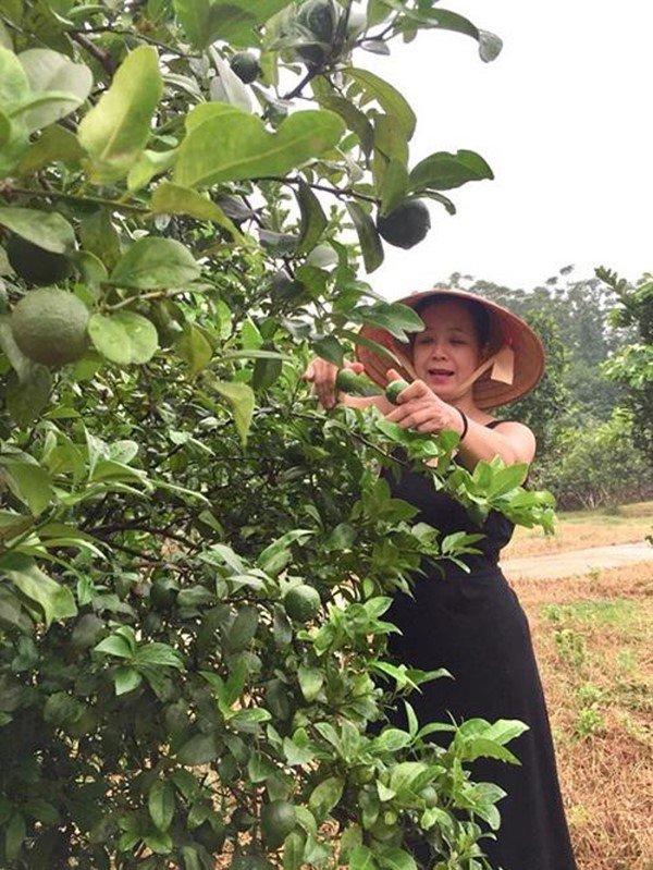 2 nữ nghệ sĩ mua nhà vườn thỏa đam mê: Rau củ chất đầy, thuê người làm không xuể việc-16