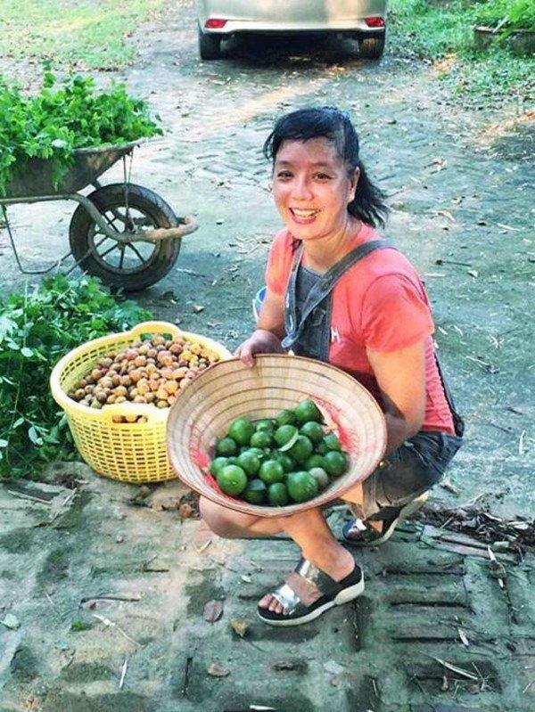 2 nữ nghệ sĩ mua nhà vườn thỏa đam mê: Rau củ chất đầy, thuê người làm không xuể việc-17