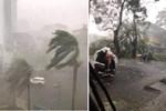 Ảnh, clip: Bão số 5 đổ bộ vào Thừa Thiên Huế gây mưa to gió giật kinh hoàng quật đổ cây xanh, giao thông hỗn loạn