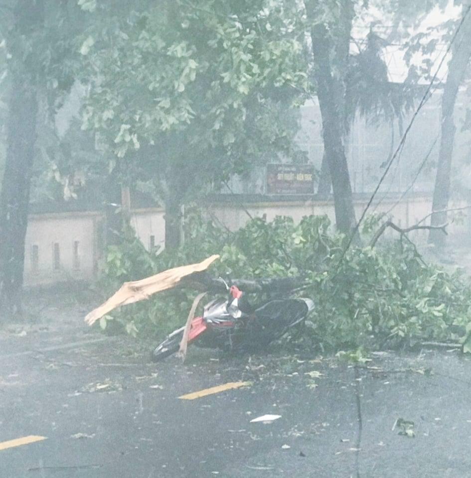 Ảnh, clip: Bão số 5 đổ bộ vào Thừa Thiên Huế gây mưa to gió giật kinh hoàng quật đổ cây xanh, giao thông hỗn loạn-7