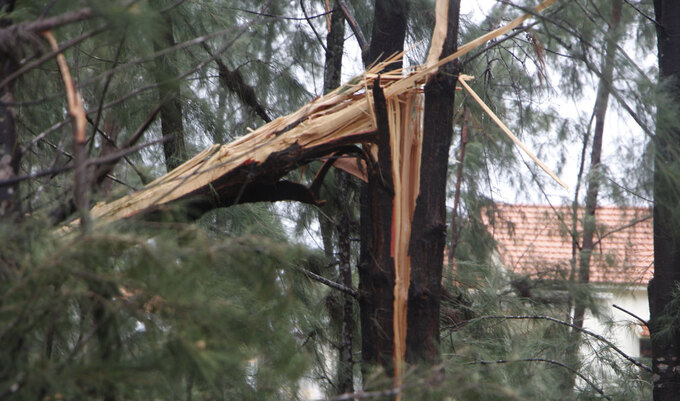 Ảnh, clip: Bão số 5 đổ bộ vào Thừa Thiên Huế gây mưa to gió giật kinh hoàng quật đổ cây xanh, giao thông hỗn loạn-8