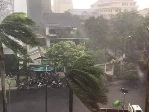 Ảnh, clip: Bão số 5 đổ bộ vào Thừa Thiên Huế gây mưa to gió giật kinh hoàng quật đổ cây xanh, giao thông hỗn loạn-4