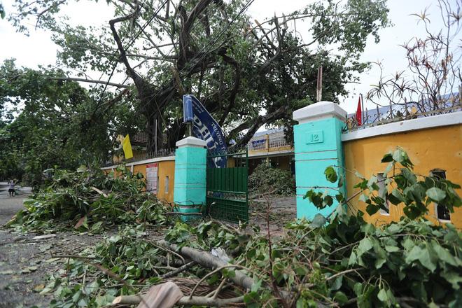 Trường Tiểu học ở Huế tan hoang, cây đổ và tốc mái hàng loạt lớp học do bão số 5-3