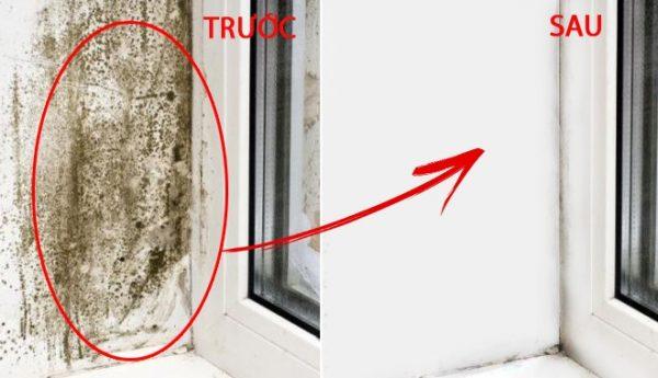 Cách tẩy vết mốc trên tường nhanh chóng mà không phải sơn lại-7