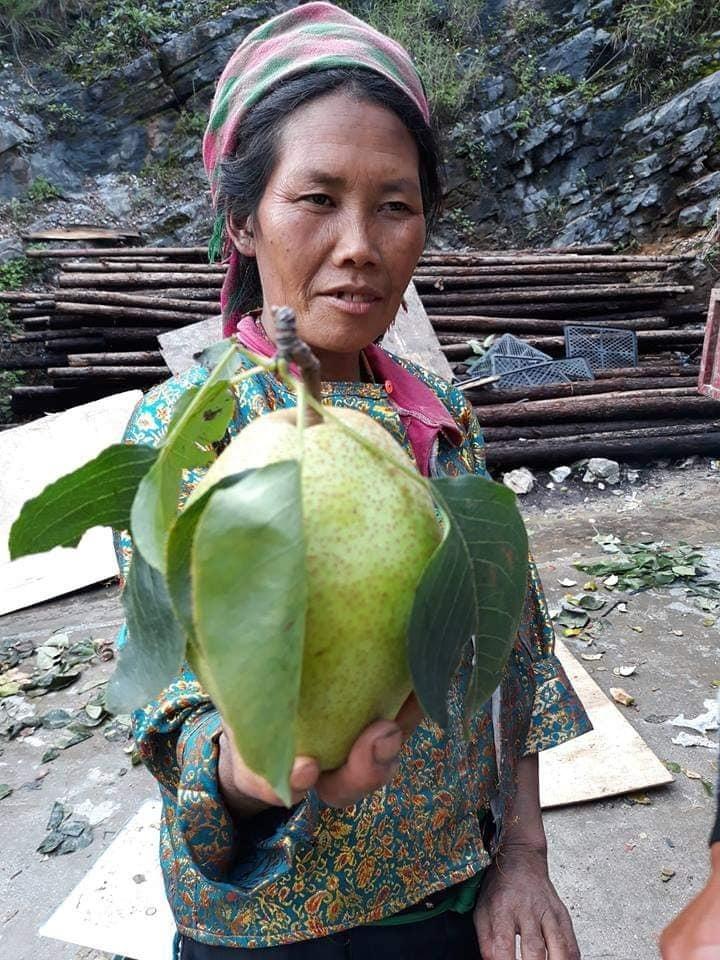 Đặc sản Hà Giang mát lịm, ngọt như đường đánh dạt hàng Trung Quốc-2