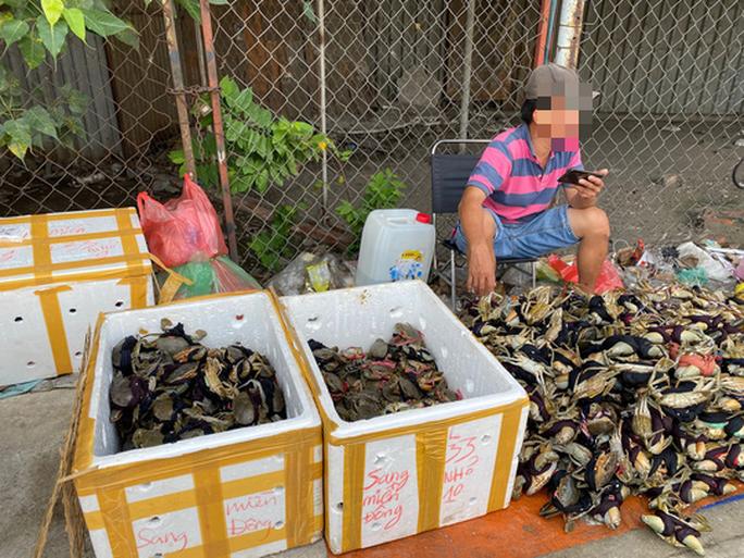 Thực hư cua Cà Mau 50.000 đồng/3 con bán đầy đường, bao ăn-1