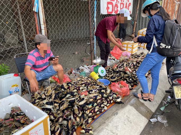 Thực hư cua Cà Mau 50.000 đồng/3 con bán đầy đường, bao ăn-2