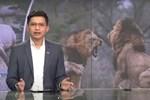 BTV 'mặn' nhất VTV lại 'cà khịa' xuất sắc vụ đánh ghen phố Lý Nam Đế