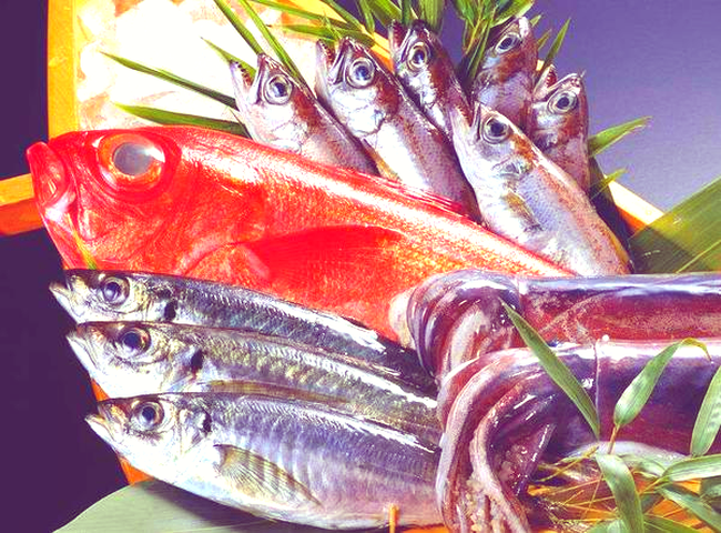 Hai loại cá này là bể chứa formaldehyde và kim loại nặng, cho dù rẻ đến mấy đi nữa cũng nên loại bỏ chúng khỏi bàn ăn-4