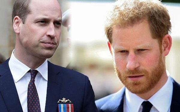 Dùng hình ảnh của mẹ quá cố để kiếm lợi, Hoàng tử Harry châm ngòi cho trận chiến mới với anh trai William, Hoàng gia Anh cũng phải tức giận?-3