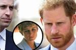 Hoàng gia Anh vừa có động thái dứt khoát loại Harry ra khỏi nội bộ gia tộc, anh trai William cũng được gọi tên trong quyết định mới-4